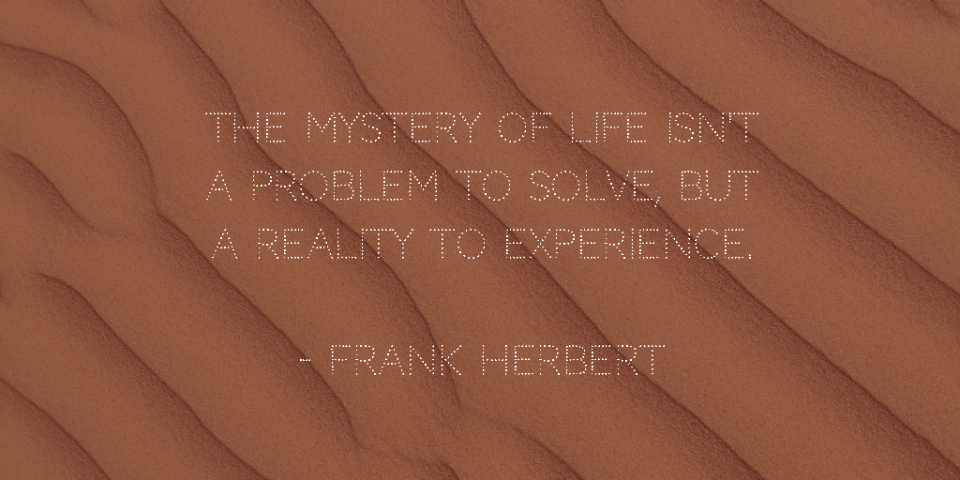 This line is spoken by Reverend Mother Gaius Helen Mohiam in the novel Dune, written by Frank Herbert (1965).